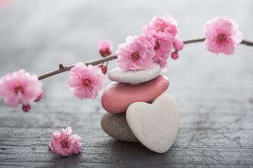 zen images photos illustrations et vid 233 os de zen