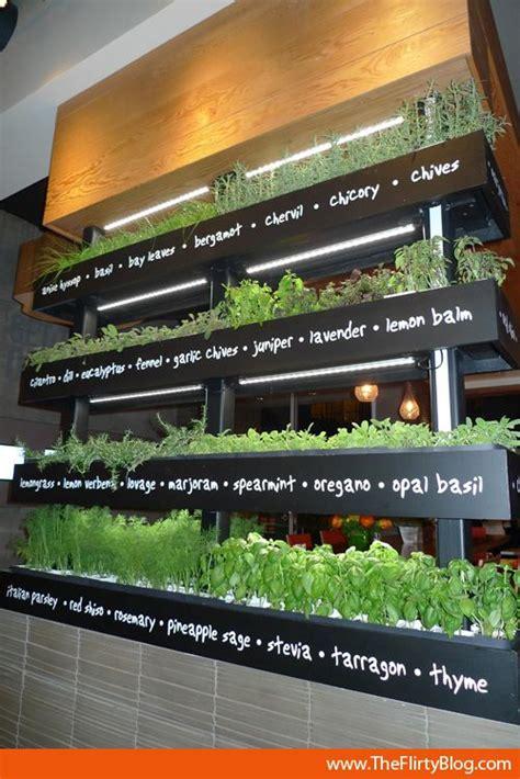 best indoor herb garden the 25 best vertical herb gardens ideas on pinterest