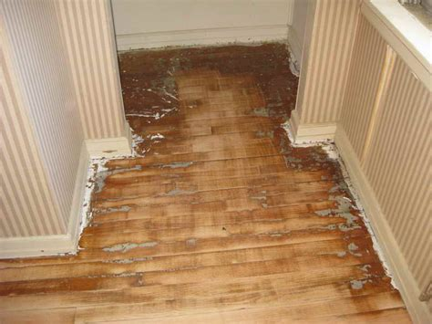 Wood Floor Refinishing Without Sanding How To Refinish Hardwood Floor Without Sanding Fortikur
