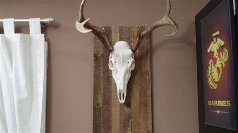 palletwood european deer mount youtube