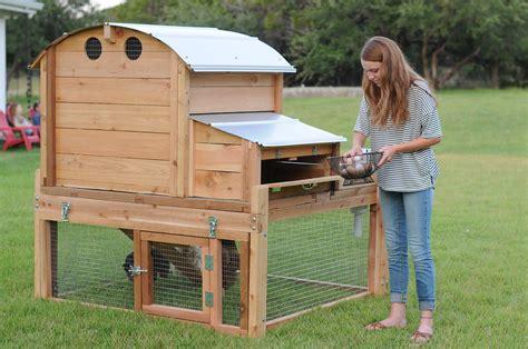top backyard chicken coop coop company