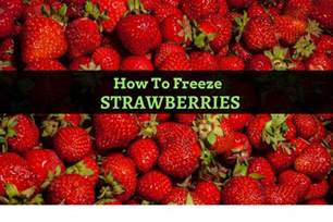 how to freeze strawberries with 6 easy methods