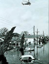 council of science editors citation machine effects of hurricane in new orleans the wiki