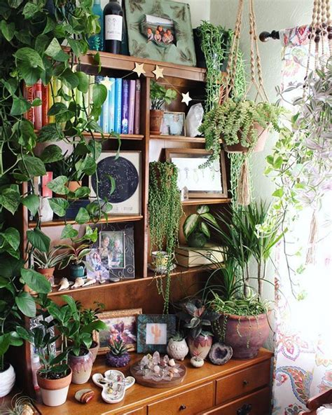 floor plants home decor 17 best ideas about indoor plant decor on pinterest