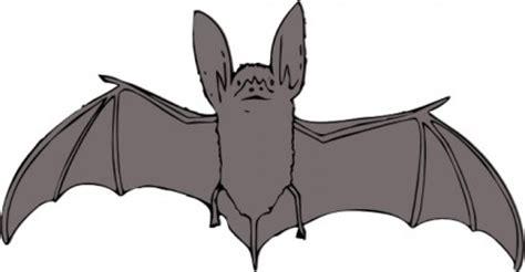 Bats Clip Art - Cliparts.co