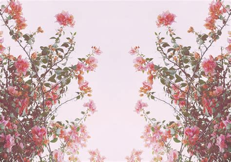 themes for tumblr floral chicken nuggets backgrounds