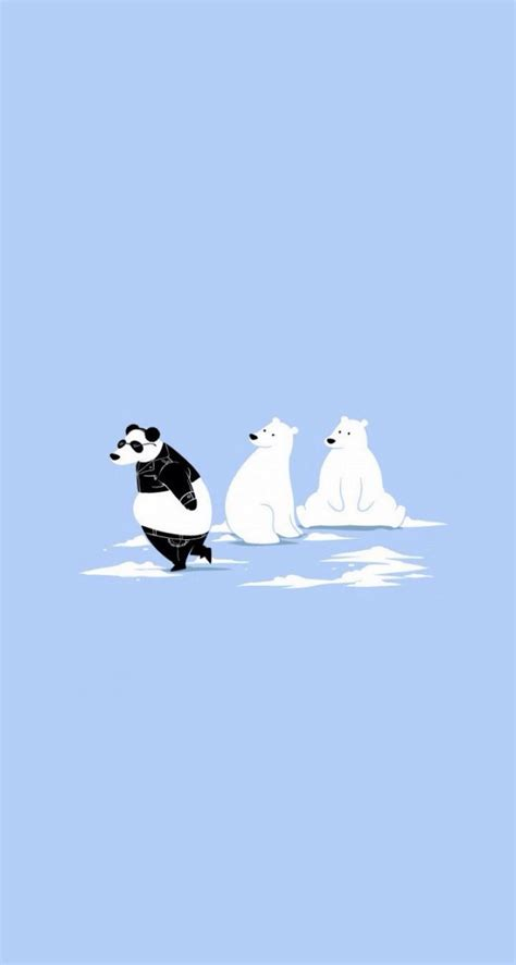 migrate polar bear cute funny iphone wallpapers
