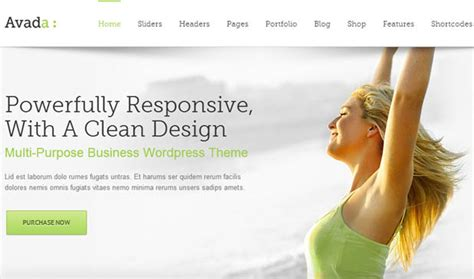 avada theme portfolio shortcode 80 best portfolio wordpress themes wp template