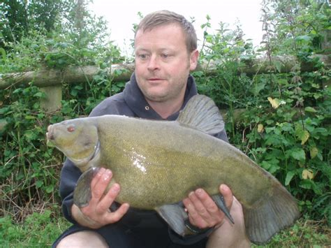 river thames record zander thames record list thames anglers conservancy