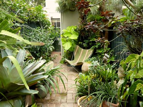 Peter Nixon S Sydney Subtropical Courtyard Garden Subtropical Garden Design Ideas