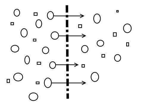 osmosis diagram osmosis diagram explanation images