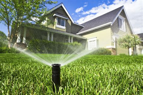 watering your lawn lawn doctor