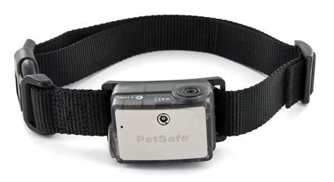 puppy bark collar big spray bark collar petsafe citronella collar pbc00 12724