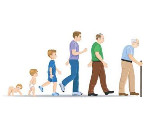 el ciclo de vida del ser humano para colorear imagui ciclo de la vida cuerpo humano como cuidarse medicina