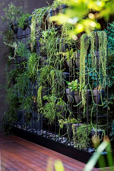 35 Succulent Gardening Ideas For Small Creative Container Plants For Garden Walls