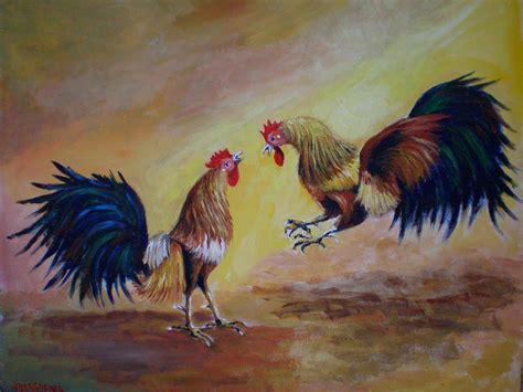 peleas de gallos en puerto rico 2015 gallos finos puerto rico newhairstylesformen2014 com