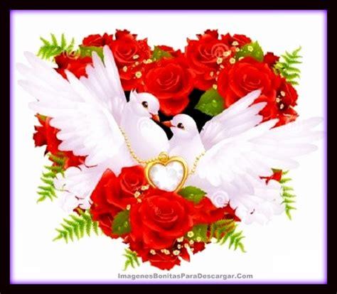 imagenes de flores para descargar fotos de ramos de flores reales para descargar