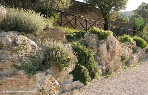 immagini giardini rocciosi finest piante da giardino roccioso giardini rocciosi