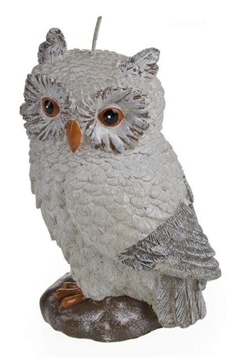 beautiful owl decor ideas latest trends  themed decorations