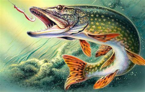 oboi fantastic fishing besplatnyy virtualnyy kartinki