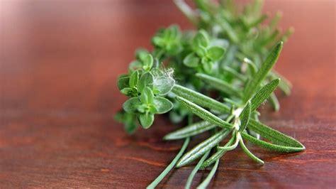 Cultiver Des Plantes Aromatiques by Comment Cultiver Les Plantes Aromatiques