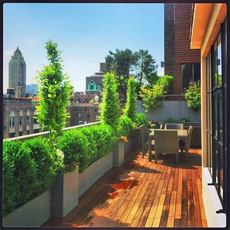 Rooftop Plants | nyc rooftop terrace roof garden deck outdoor dining