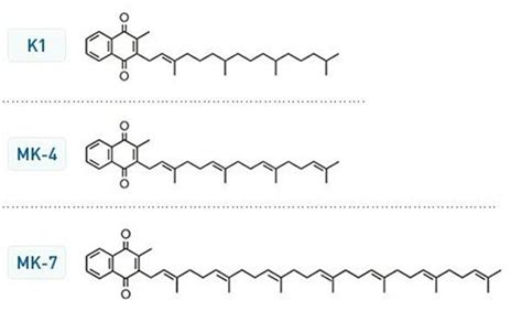 alimenti di origine minerale menaquinone 1