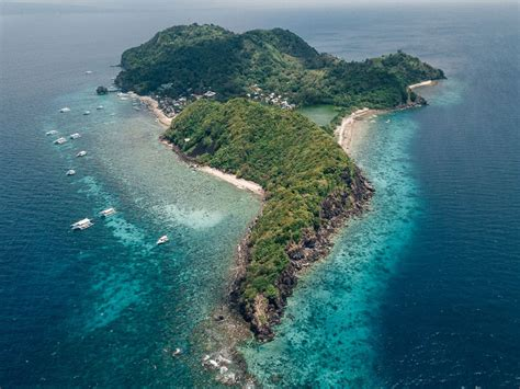 apo island  dumaguete  ultimate guide  jonny