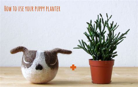 animal pots animalplanters turn your flower pots into cute animals