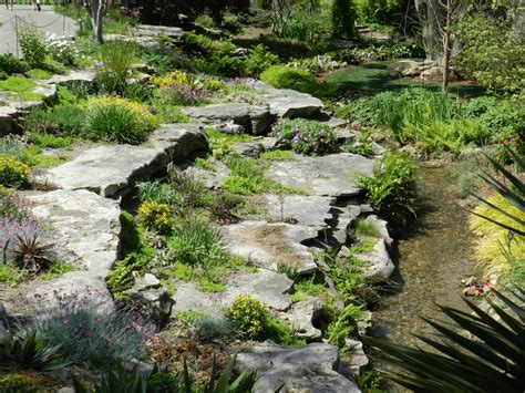 Japanese Rock Gardens Pictures Prairie S Garden Tulipmania At The Dallas Arboretum