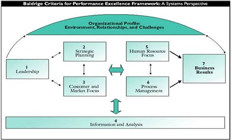 human resource planning diagram image gallery human resource processes diagram
