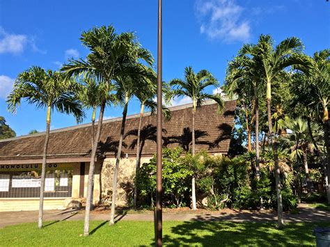 Honolulu Search Honolulu Zoo Images Search