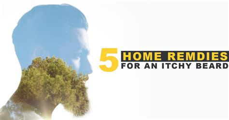 scratching home remedies 5 home remedies for an itchy beard