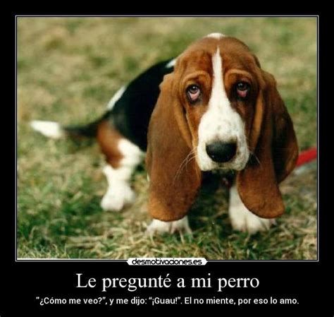 www perro coje a mujer mujer y hombre cojiendo youtube newhairstylesformen2014 com