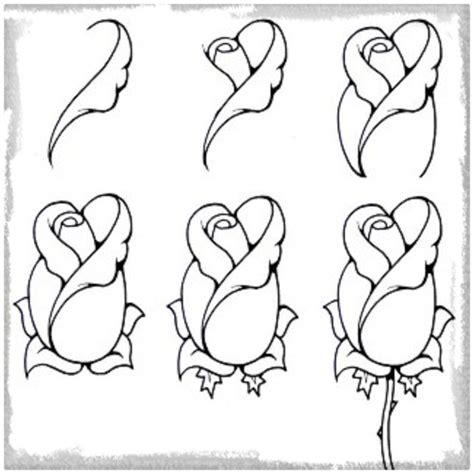 imagenes a lapiz gratis imagenes para dibujar de rosas a l 225 piz archivos dibujos