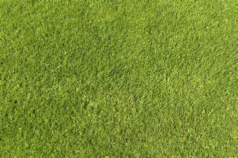 grass pattern website green grass texture 01 by simoonmurray on deviantart