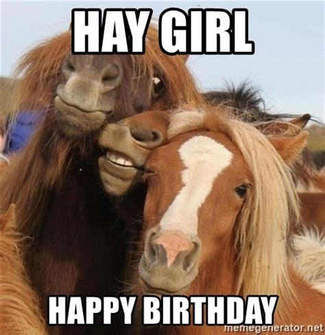 Horse Birthday Meme - happy birthday horse my blog