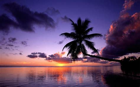 hd moorea french polynesia wallpaper