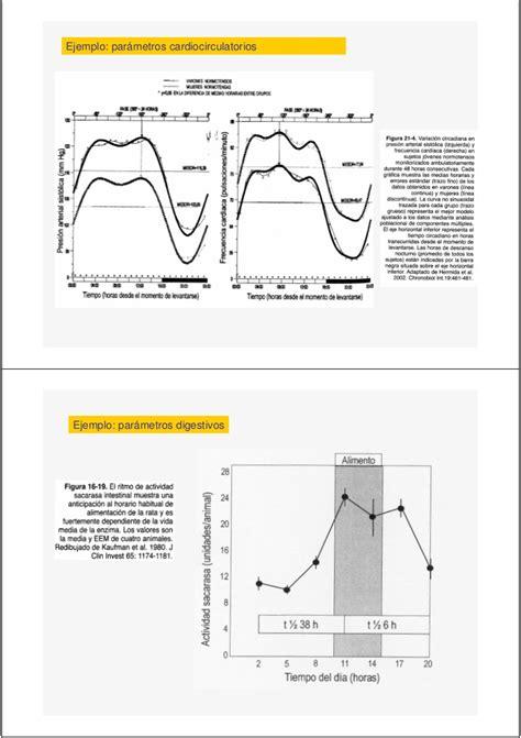 oscilacion temperatura corporal 1 ritmos biologicos