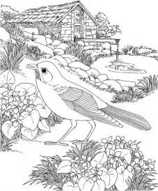 Flower Garden Coloring Pages Coloring Pages For Flower Garden Coloring Pages For