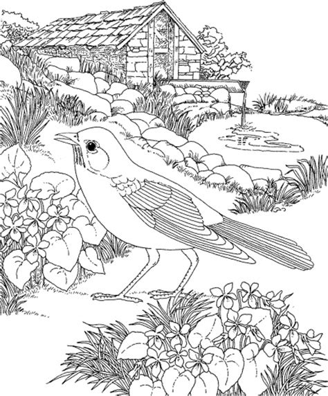 coloring pages of flowers and gardens coloring pages for flower garden coloring pages for