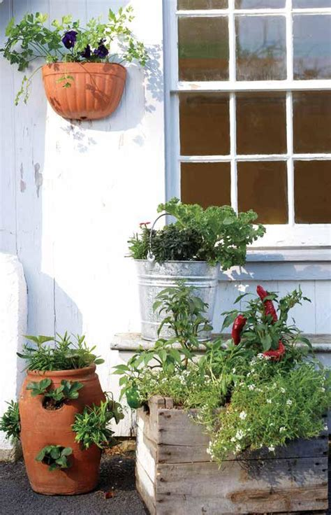window box garden vegetables vegetable container gardening pdf