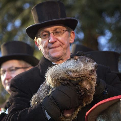 groundhog day shadow meaning pennsylvania s punxsutawney phil predicts early