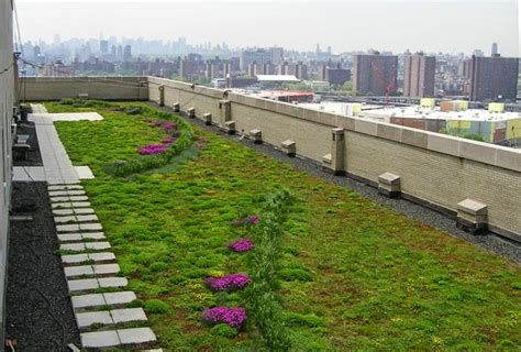 eco friendly green roofs green roofs are the future