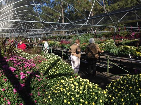 fall plant sale mobile botanical gardens
