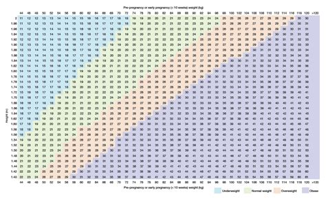 pregnancy chart week by week calendar template 2016