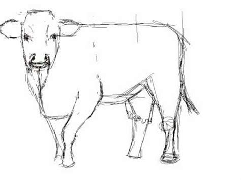 imagenes de toros para dibujar a lapiz c 243 mo dibujar una vaca how to draw a cow youtube
