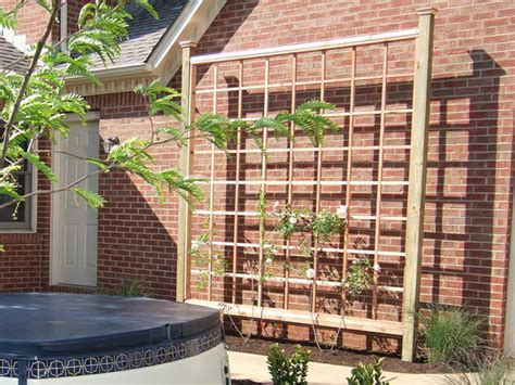 planning ideas simple ideas for building a trellis