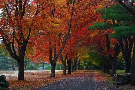 National Geographic Wall Murals file new england driveway jpg wikimedia commons