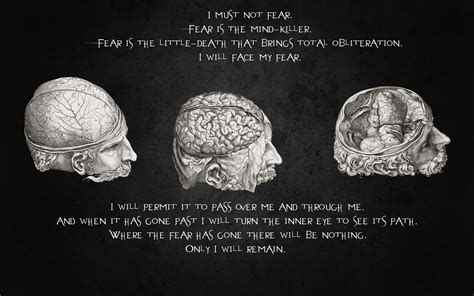 psychology images the brain poem wallpaper and quotes brain wallpaper 1920x1200 15325 wallpaperup